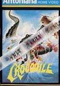 Crocodile 海报