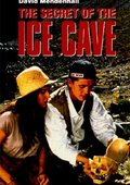 The Secret of the Ice Cave 海报