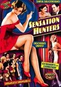 Sensation Hunters 海报