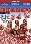 The Cheerleaders 海报