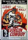Virgin Cowboy 海报
