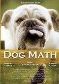 Dog Math 海报