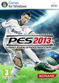 实况足球:职业进化足球2013