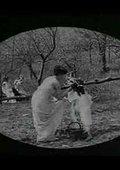 Le printemps - Épisode 3: La becquée - Dans les vergers 海报