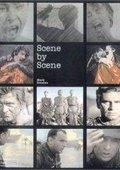 Roman Polanski: Scene by Scene 海报