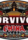 幸存者:中国 第十五季 海报