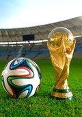 世界杯日报