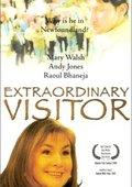 Extraordinary Visitor 海报