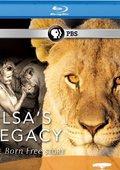 PBS:自然 - 艾尔莎的遗产:生而自由的故事 海报