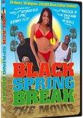 Black Spring Break: The Movie 海报