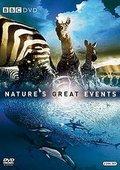 BBC:自然界大事件 海报