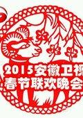 2015安徽卫视春节联欢晚会 海报