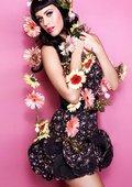 水果姐Katy Perry巴西里约摇滚音乐节