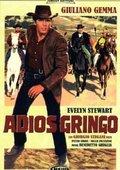 Adiós gringo 海报
