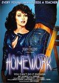 Homework 海报