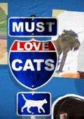 动物星球:为猫痴狂