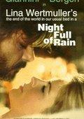 绵绵雨夜 海报