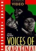 Voices of Sarafina! 海报