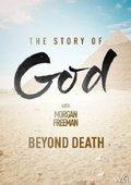 国家地理:与摩根·弗里曼探寻神的故事