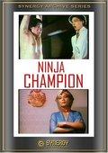 Ninja Champion 海报