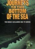 BBC:海底世界揭密 海报