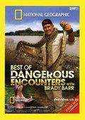 国家地理杂志 动物零距离 寻找巨蛇