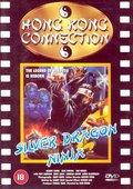 Silver Dragon Ninja 海报