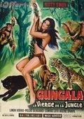 Virgin of the Jungle 海报