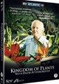 BBC:植物王国