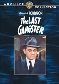 The Last Gangster 海报