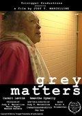 Grey Matters 海报