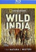 国家地理:野性印度的秘密