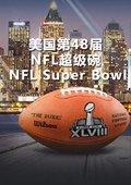 2014年美国第48届NFL超级碗