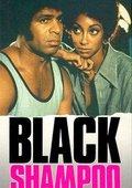 Black Shampoo 海报