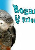 Bogart & Friends 海报