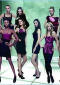 全美超模大赛 第十五季 海报