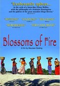 Blossoms of Fire 海报