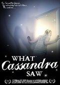 What Cassandra Saw 海报