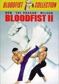 血拳2 海报