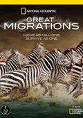 国家地理:大迁徙 海报