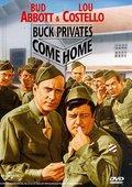 巴克大兵回家乡 海报