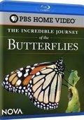 PBS :蝴蝶的神奇之旅