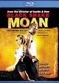 黑蛇呻吟 海报
