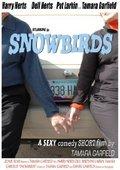 Snowbirds 海报