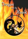 Dragon and the Hawk 海报