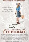 How I Became an Elephant 海报