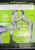 鸟与蜂 海报