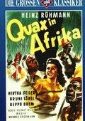 Quax in Afrika 海报