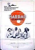 哈瑞的夏天 海报