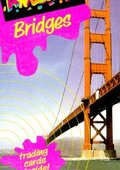 Bridges 海报
